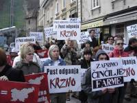 Carnival anti-fur demo in Ljubljana 2 [ 57.84 Kb ]