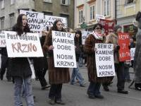 Carnival anti-fur demo in Ljubljana 9 [ 51.41 Kb ]
