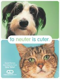 To Neuter is Cuter [ 108.95 Kb ]