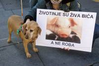 Demo against animal transport 2009. [ 380.87 Kb ]