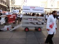 Demo against animal transport 2009