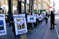 Demo against animal transport 2010 9 [ 159.68 Kb ]