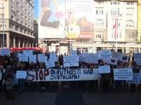 Protest for the implementation of the Animal Protection Act 14 [ 137.96 Kb ]