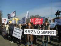 Anti-fur demo Zagreb 2012 a [ 91.24 Kb ]