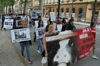 Demo against animal transport, Zagreb 2012 [ 108.61 Kb ]