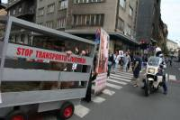 Demo against animal transport, Zagreb 2012 [ 84.65 Kb ]