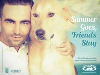 Darijo Brzoja - Summer Goes, Friends Stay  billboard