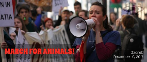 March for Animals eng banner [ 856.19 Kb ]