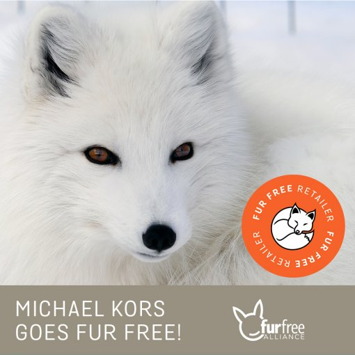 Michael Kors goes fur free [ 644.08 Kb ]
