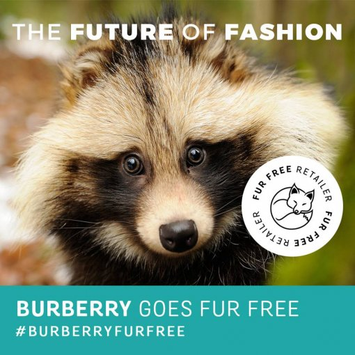 Burberry drops fur [ 129.05 Kb ]