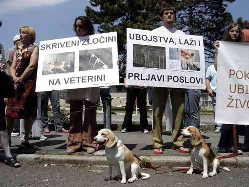 Protest in front of the Faculty of Veterinary Medicine 4
