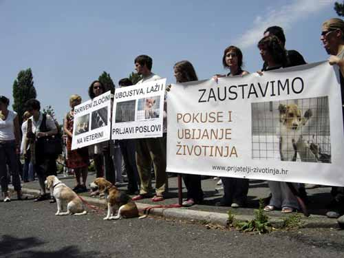 Protest in front of the Faculty of Veterinary Medicine 5