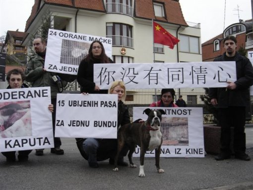 Protest in front of the Chinese Embassy 3