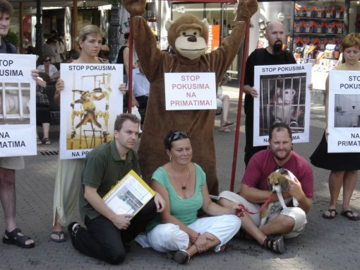 Stop experiments on primates 2