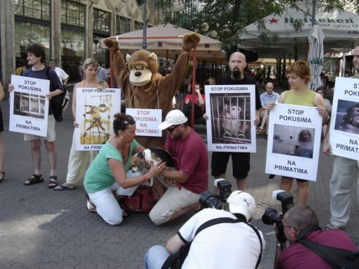 Stop experiments on primates 3