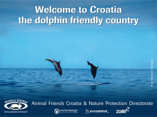 Jumbo 'Welcome to Croatia - the Dolphin Friendly Country' [ 231.93 Kb ]
