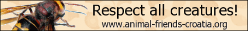 Respect all creatures! - eng