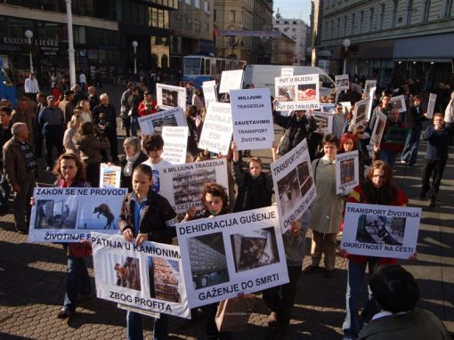 Demo against animal transport 2009 [ 127.88 Kb ]