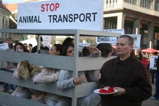 Demo against animal transport 2009 [ 85.46 Kb ]