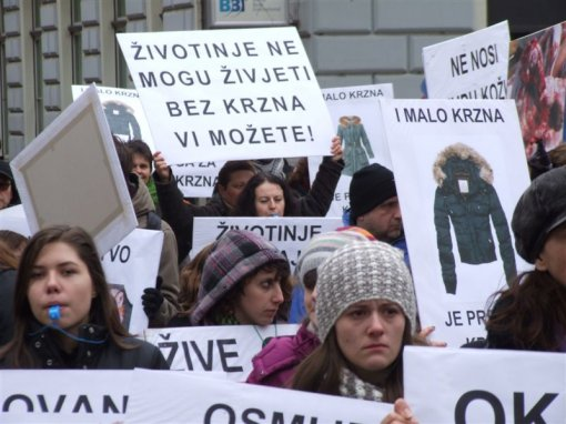 Demo against fur in Sarajevo 3 [ 86.89 Kb ]