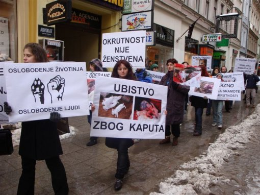 Demo against fur in Sarajevo 4 [ 115.96 Kb ]