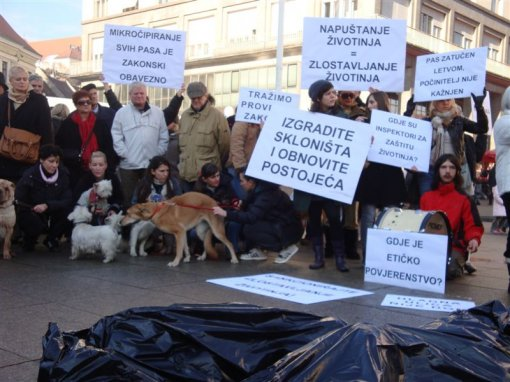 Protest for the implementation of the Animal Protection Act 3 [ 106.40 Kb ]
