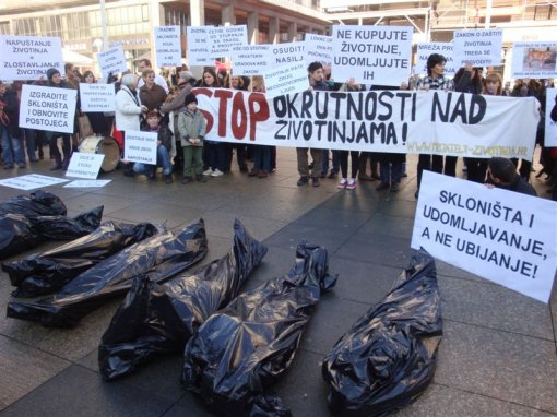 Protest for the implementation of the Animal Protection Act 4 [ 125.54 Kb ]