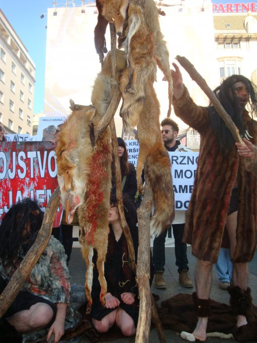 Demo against fur 2011 [ 1.33 Mb ]