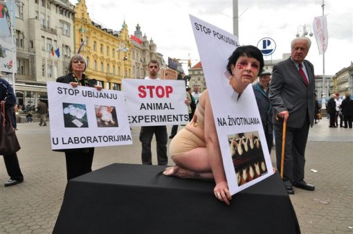 World Day of Animals in Laboratories - Photo by Krume Ivanovski [ 88.24 Kb ]